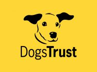 Dogs-Trust-Logo-Yellow-background-DT-below-dog